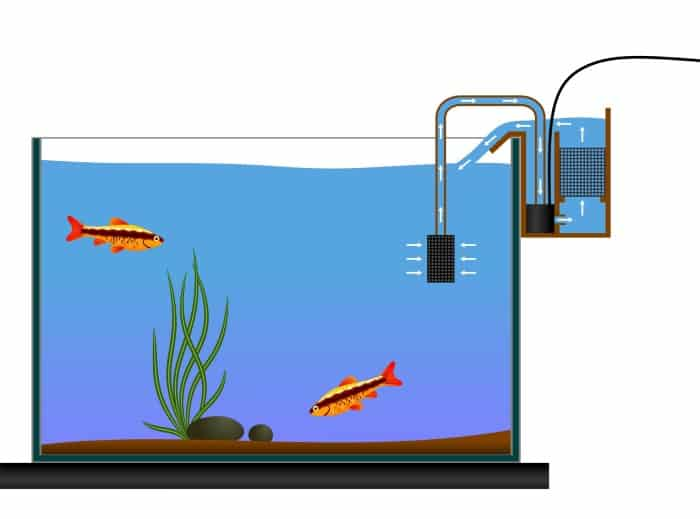 fish tank water flow in a HOB style filter